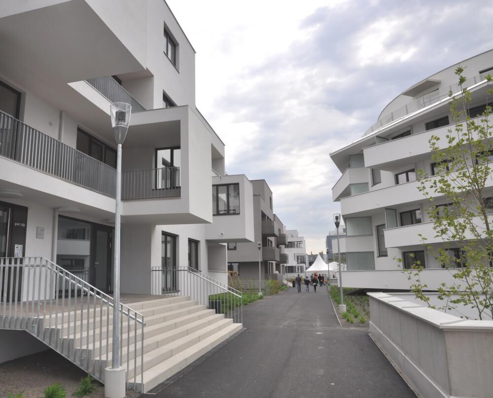 Immobilie von BWSG in Gerasdorfer Straße 141/02/024, 1210 Wien #1