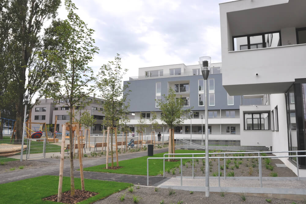 Immobilie von BWSG in Gerasdorfer Straße 141/02/024, 1210 Wien #4