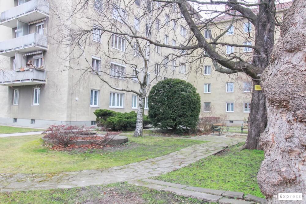 Immobilie von BWSG in Praterstraße 4a/02/02, 3100 St. Pölten #2