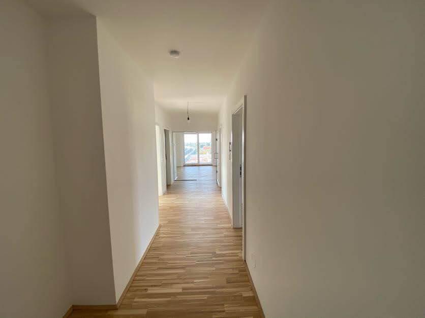 Immobilie von BWSG in Feldgasse 41c/05/018, 8020 Graz #3